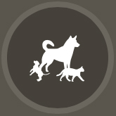 ico_dogs_bn